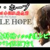 【リトル・ホープ】ネタバレなしレビュー(実績解除100%後)PC版【Little Hope】